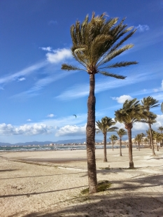 El Arenal Playa de Palma